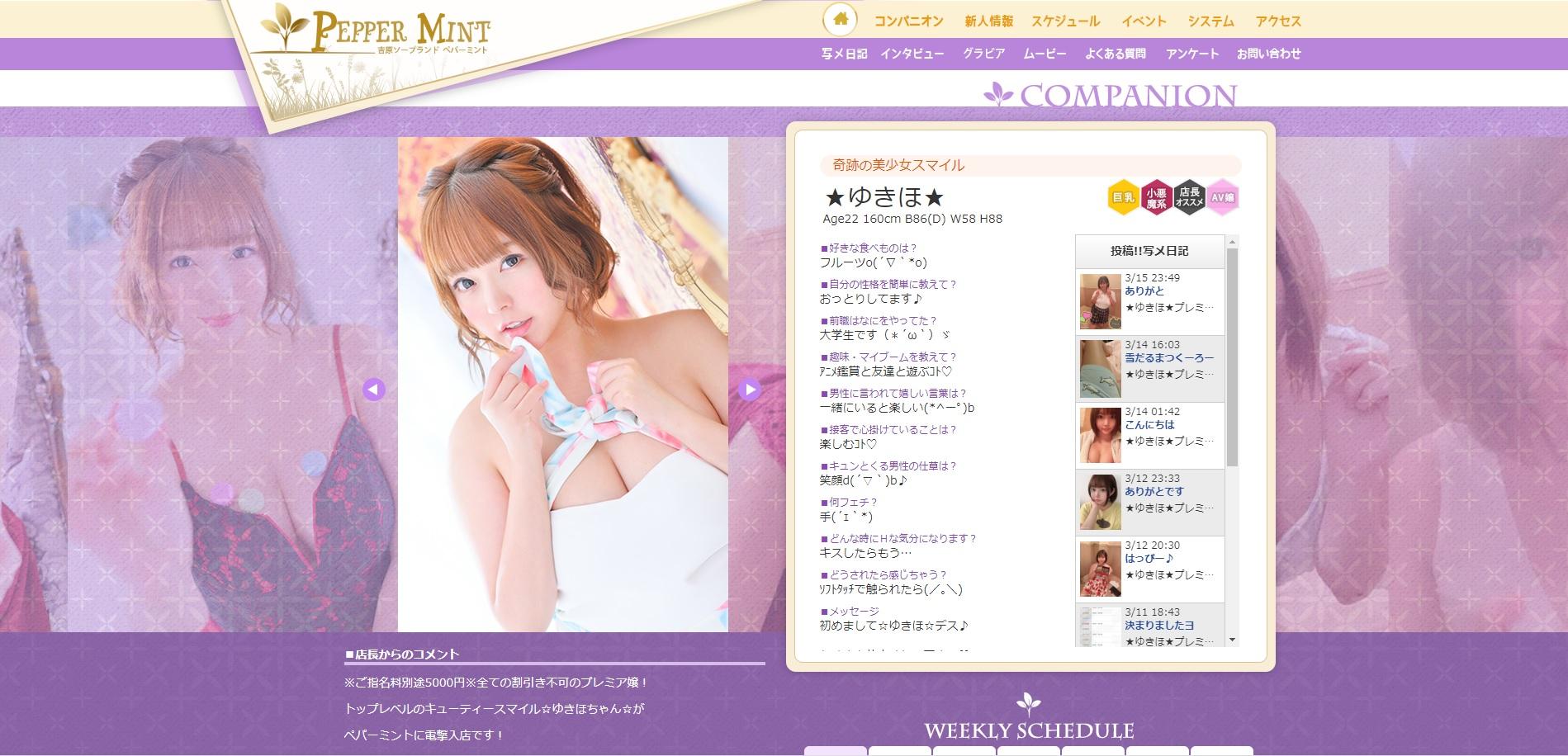 【日本・東京】風俗店『PEPPER MINT』在籍的前AV女優介紹