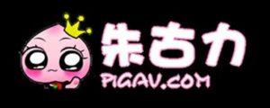 這張圖片的 alt 屬性值為空,它的檔案名稱為 PIGAV-300x120-1.jpg